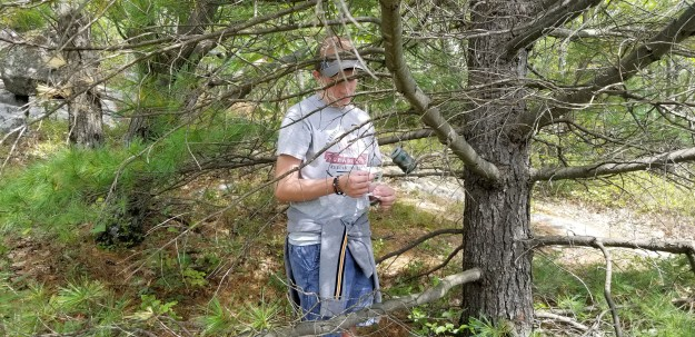 Cohen finds a geocache on Rattlesnake Mountain.